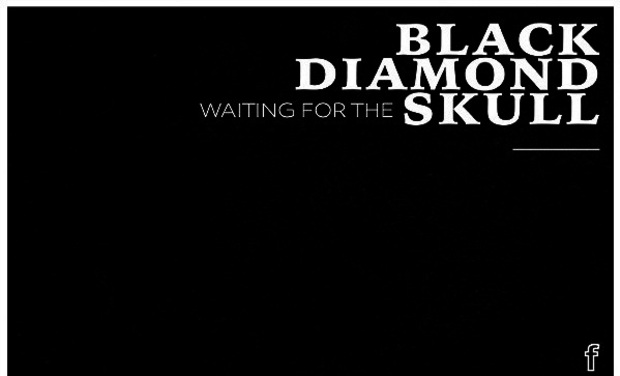 Project visual Black Diamond Skull®