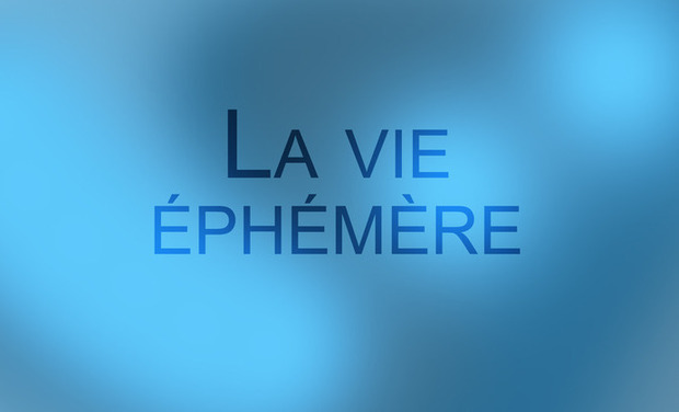 Project visual La vie éphémère