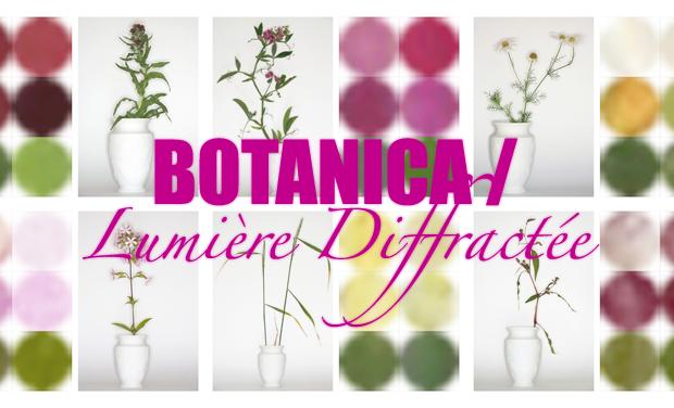 Project visual BOTANICA / lumière diffractée