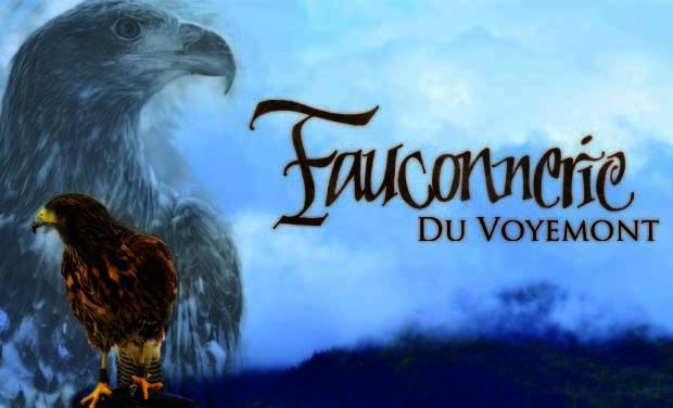Visuel du projet La Fauconnerie du Voyemont