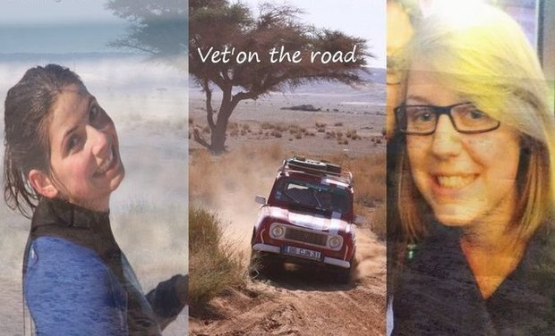 Project visual Vet'on the road again - Students challenge 2015