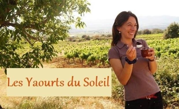 Visuel du projet Les Yaourts du Soleil : des vaches Jersiaises dans l'Hérault
