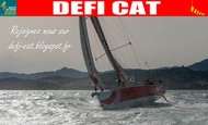 Widget_affiche_defi_cat_55