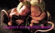 Widget_souris_anne_guedes