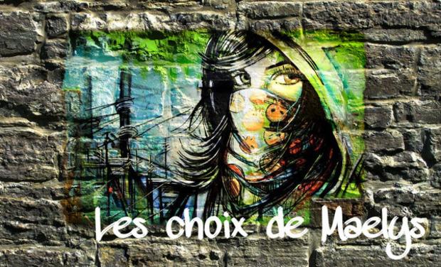 Visuel du projet Les Choix de Maelys
