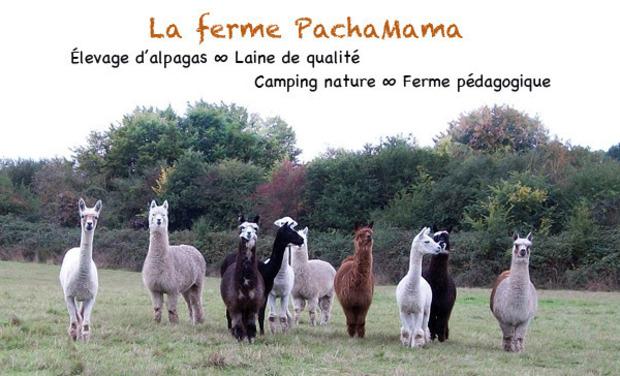 Visuel du projet La ferme PachaMama