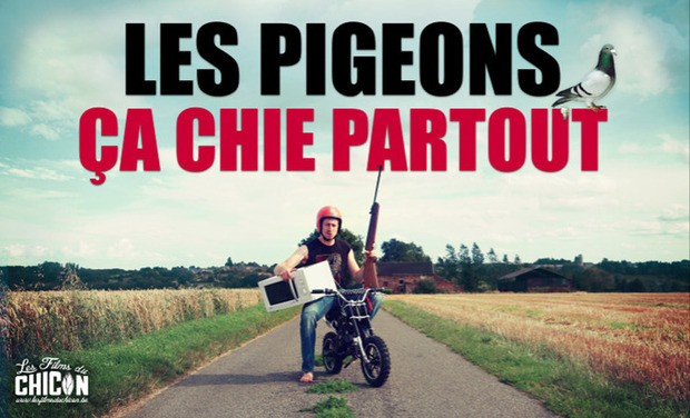 Visuel du projet Les pigeons, ça chie partout