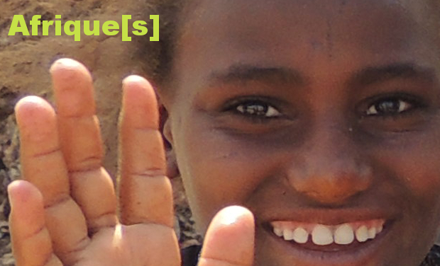 Visuel du projet Afrique[s]