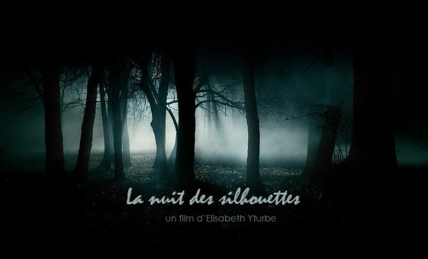 Visuel du projet La Nuit des Silhouettes