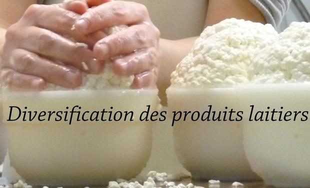 Visuel du projet Diversification des produits laitiers