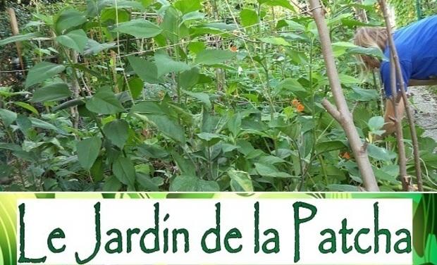 Visueel van project Le Jardin de la Patcha
