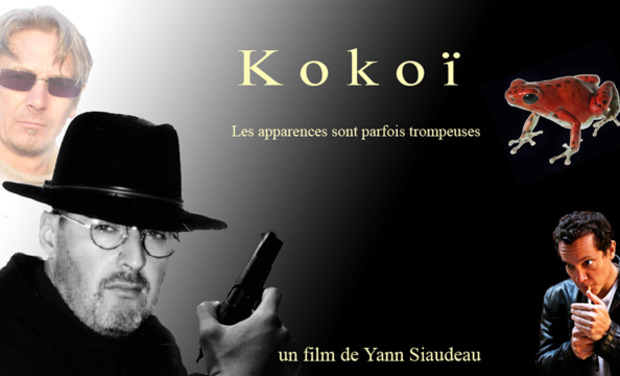 Project visual Kokoï