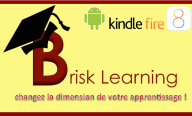 Visuel du projet Brisk Learning Application