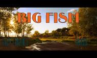 Widget_bigfishend-1410293245
