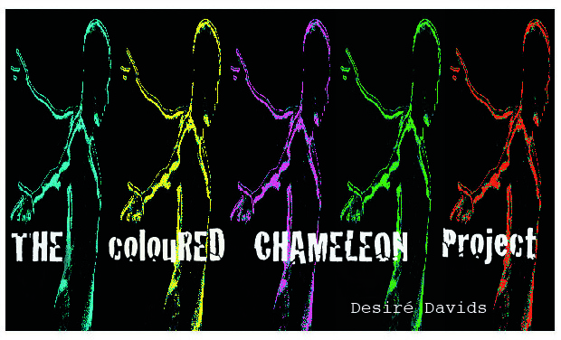 Visuel du projet The colouRED CHAMELEON