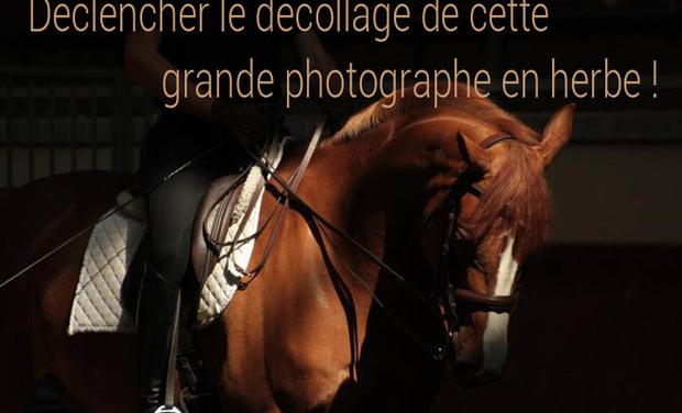 Large_baniere-1411543836