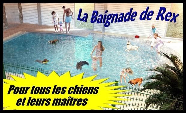 Large_la_baignade_de_rex_01-1418817223
