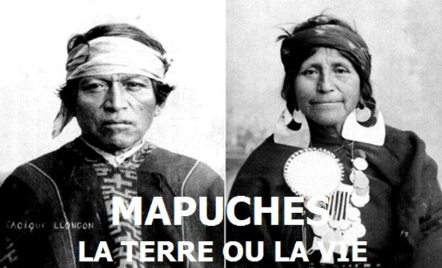 Visuel du projet Mapuches, la terre ou la vie