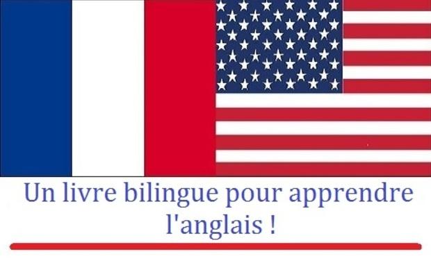 Large_drapeau_fra-usa-1414014026