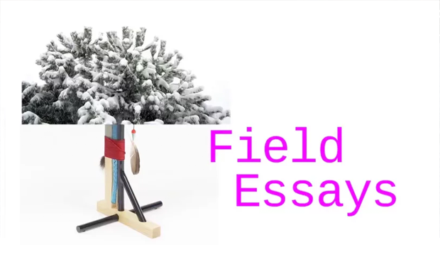 Project visual Field Essays, Account of things that happened