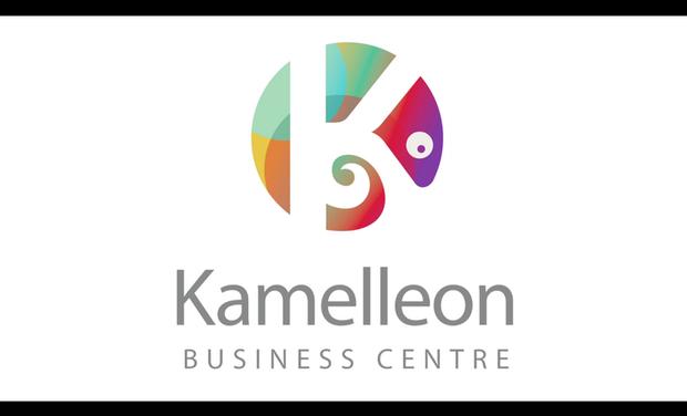 Visueel van project Kamelleon