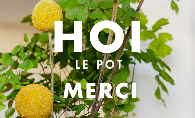 Project visual Hoi le pot