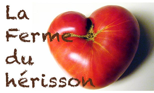 Visuel du projet Cultirateau pour beaux légumes bio