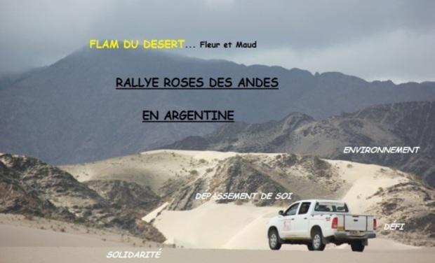 Visuel du projet Rallye Roses des Andes 2015- Flam du désert
