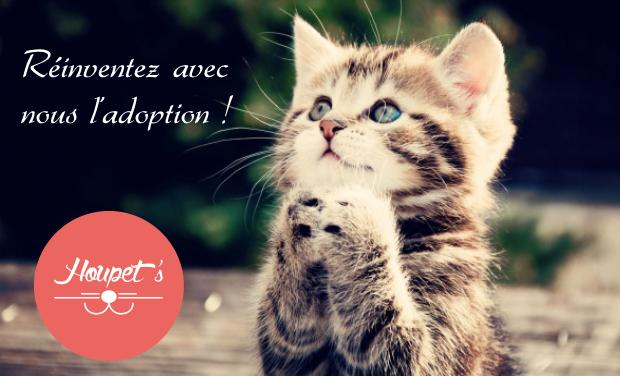Visuel du projet Houpet's - Réinventons l'adoption