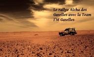 Widget_les-scorpions-des-dunes-rallye-aicha-des-gazelles-2015-1414355754