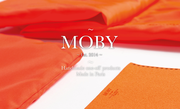Project visual MOBY