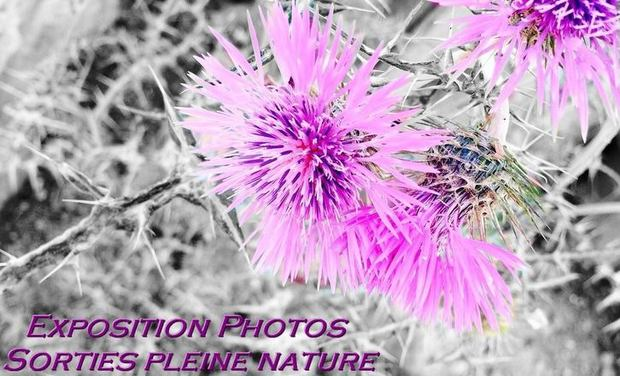 Project visual Expo photo plantes - Sorties pleine nature