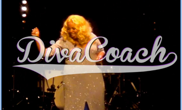 Project visual DIVA COACH