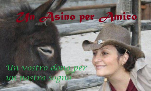 Visueel van project Un Asino per Amico