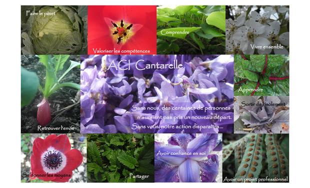 Visuel du projet Un jardin pour trouver sa voie, sa place, son avenir professionnel...