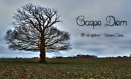 Widget_capture_d__cran_2014-12-02___11.35.48-1417516591