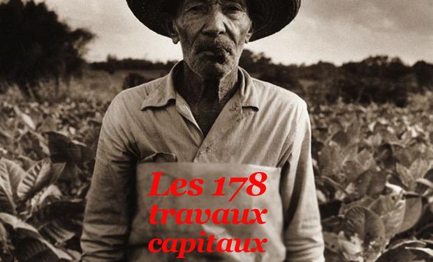 Visuel du projet Les 178 métiers capitaux