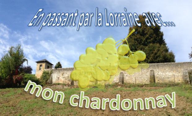Visuel du projet En passant par la Lorraine... avec mon chardonnay