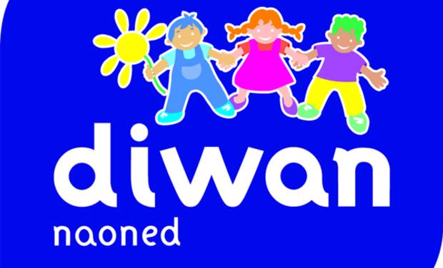 Large_logo-diwan-naoned__2_-1417514045