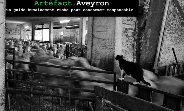 Large_art_fact.aveyron-1418077744