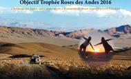 Widget_affiche_roses_des_andes-1418213996