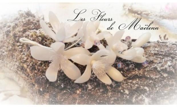 Visuel du projet Les Fleurs de Maëlenn, bijoux et accessoires