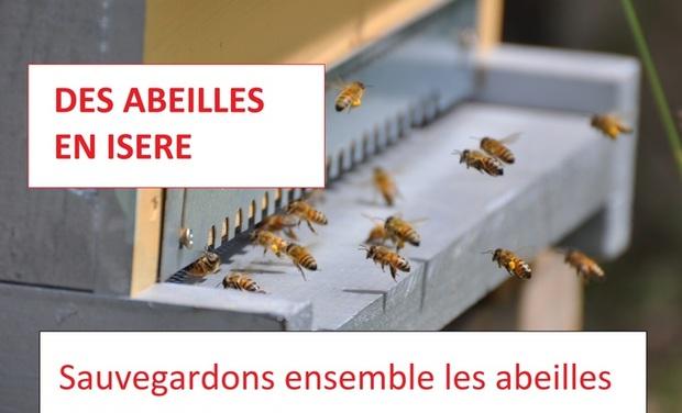 Visuel du projet Des abeilles en Isère