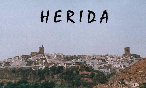 Visueel van project Herida
