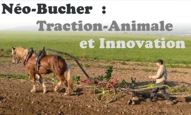 Visuel du projet Néo-Bucher : Traction animale et innovation