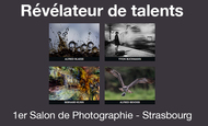 Widget_revelateur_de_talents-1421888871
