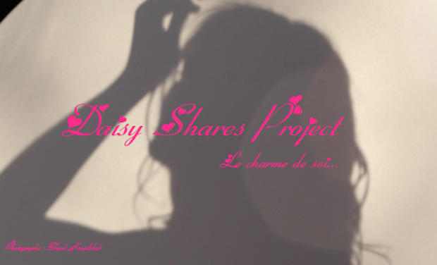 Project visual Projet Daisy Shares