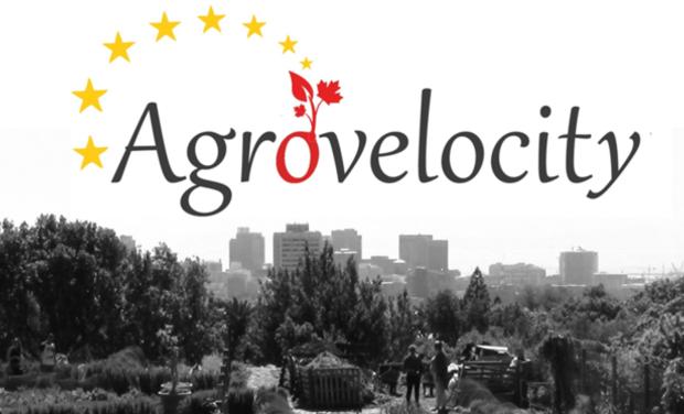 Visuel du projet AgroVeloCity, l'agriculture urbaine nord-américaine, à vélo!