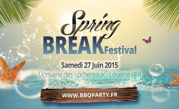 Project visual Soutien au Springbreak Festival 2015