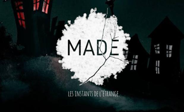 Visuel du projet MAD/E